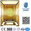 Residence Home Elevator with AC Vvvf Gearless Drive (RLS-231)