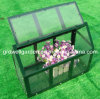 Mini Greenhouse for Young Plants (
