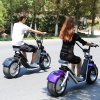 2 Wheel Harley Electric Scooter 18 Inch 1200W 60V Remove Battery Electric Scooter City Coco