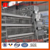 a Type Layer Chicken Cage for Poultry Farm