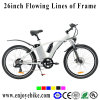 Light Weight 6061 Frame City Ebike E-Bicycle Electric Bikes (PE-TDE02Z-1)