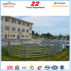 Economy Galvanized Portable Cattle Fence Panel for Australia