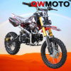 125CC Pit Bike Dirt Bike with USD Fork (QW-dB-07)