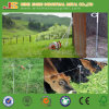 Cattle Protection Electric Fence Post with Pigtail