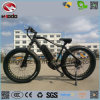 Wholesale Electric Bicycles Fat Tire Cheap Electric Bike for Sale