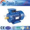 2-Pole 3kw Y2 Three-Phase Cast Iron Induction Motor