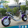 2017 Latest Ecorider Two Wheel Electric Bike Big Tire electric Motorcycle