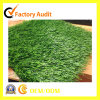 Anti-UV Soft Durable Football Artificial Grass Playground Sports Court