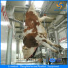 Halal Cattle Slaughter Line Slaughterhouse Machine Abattoir Equipment