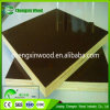 Good Quality for Construction in Linqing Chengxin Wood