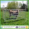 Wholesale Cheap Hot DIP Galvanized Economy Corral Panel for Yard