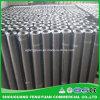 3mm Sbs Polymer Bituminous Elastomeric Waterproof Membrane