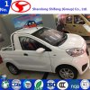 2 Doors 2 Seat Small Electric Car From China