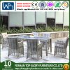 Patio Rattan Dining Set with Cushion Outdoor Dining Set (TG-1666)