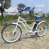 2017 Road Electric Bike Cheap Ebike
