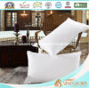 Professional Factory Price Down Pillow White Goose Down Filling Pillow for Hotel