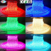 ETL/UL 120V/220V Double Row RGB LED Strip Light LED Ribbon