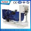 Good Quality Lovol 22kw to 520kw Diesel Generator Set