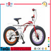 "Fashion Design Suspension Snow Beach Cruiser 20"" Bike Fat Tyre MTB Children Bicycle BMX Mini Bike on Sale"