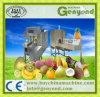Automatic Stainless Steel Fruit Peeling Machine