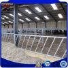 Empty Inside Prefabricated New Steel Frame for Cattle Farm House