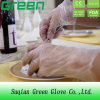 Disposable PE Safety Gloves Suppliers
