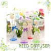 2015 High Quality Sola Wood Flower Mini Aroma Reed Diffuseur Decoration
