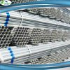 ASTM Q195 Q235 Galvanized Pipe Gi Scaffolding Material Pipe