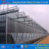 Professional Manufacture Plastic Film Greenhouse in China