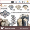 High Quality Fan Shaped Granite Cobblestone/Cubic/Cube/Paving Stone for Driveway, Walkway