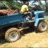 High Quality 18HP 4WD Agricultural Farm Tractor