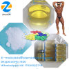 Finished Liquid Oil Steroid Enanject 250 Testosterone Enanthate Te 400mg/Ml