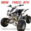 New 110cc Atv. Quad. Kawasaki 110cc Atv (MC-314)