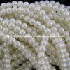 5X6mm White Glass Pearl Rondelle Beads Strand (KT-GPB01)
