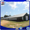 Prefab Steel Strucure House for Chicken Farm