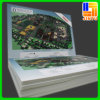 PVC Foam Board Outdoor Display Advertising PVC Sheet