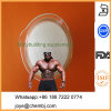 High Quality 19-Hydroxy-Androst-4-Ene-3, 17-Dione Androstenedione for Pharmaceuticals