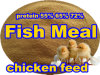 Fish Meal as Protein Powder for Animal