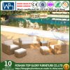 All Weather PE Rattan Outdoor Furniture Sofa Set Coffee Set (TG-JW31)