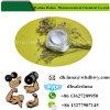 Treatment of Hyperplasia Trestolone Acetate Steroids 6157-87-5 Trestolone Acetate