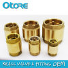 Brass in-Line Check Valve, Virtical Check Valve, Spring Loaded Clack Valve, Non-Return Valve, One-Way Valve