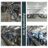 Big Folding Electric Bike with Hidden Battery