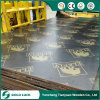 12mm Vietnam Black Film Faced Plywood, Shuttering Plywood