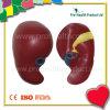 Kidney Shape Custom PU Anti Stress Ball