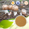 Health Care Product Plant Extract Agaricus Blazei Murrill