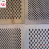 Ss Perforated Metal Wire Mesh (TYH)