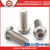 Stainless Steel Allen Pan Head Screws