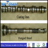 Engine Parts of Camshaft for Hyundai H100