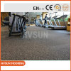 Great Noise and Vibration Absorption Functional Training Floor Use for Lifting, Extreme Exercises, Horse Stalls, Doggy D