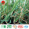SGS Certified 4 Colour Synthetic Grass for Landscape